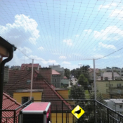 protiholubum.cz Síť proti holubům terasa 0401003